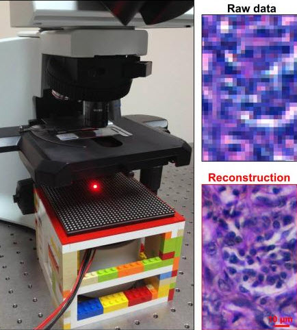 Caltech technique boosts conventional microscope into billion-pixel imaging system